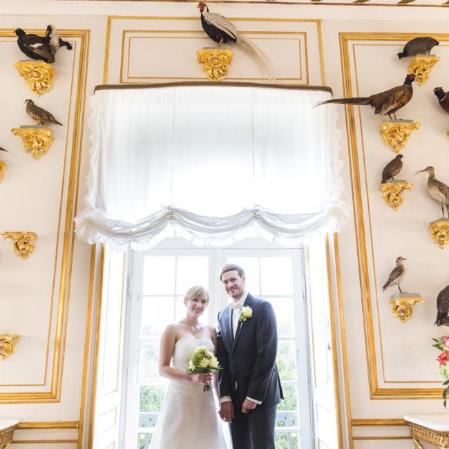 hochzeit, gold, vögel